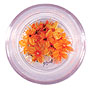 Dried real flowers for nail art - Norin